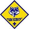 cubscouts2
